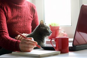 woman working at a desk with cat on her lap